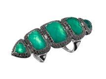 Luxury full length finger ring Stock Photography