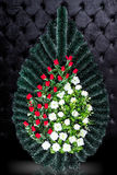 Luxury Funeral wreath with red and white flowers isolated on royal dark background. Stock Image