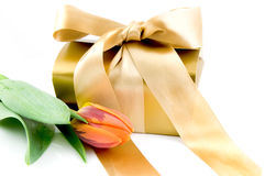 Luxury gift box with orange tulip Stock Image