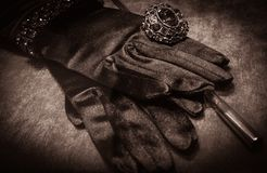 Luxury gloves Stock Photo