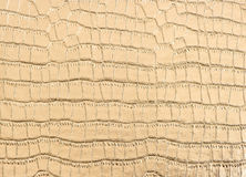 Luxury golden crocodile leather background Stock Images