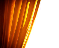 Luxury golden curtain Stock Photo