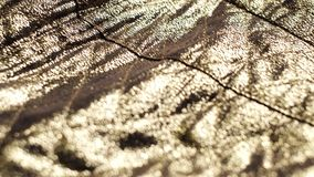 Golden shiny background, natural texture of a beautiful fashionable fabrics with sparkles. Luxury golden shiny background, natural texture of a beautiful stock video
