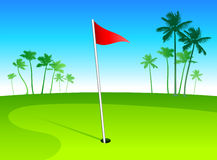 Luxury golf course with palm trees on blue sky bac Royalty Free Stock Photography