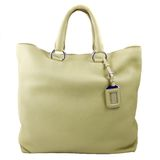 Luxury green leather female bag Stock Image