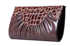 Free Luxury Hand Bag / Purse Stock Image - 11457621