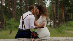 Luxury happy bride and stylish groom, sitting on a log in a summer forest. stock footage