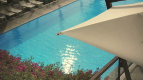 Luxury Holiday Pool Background stock video