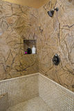 Luxury home bathroom shower Royalty Free Stock Image