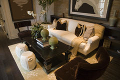 Luxury home living room. Royalty Free Stock Photography
