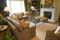 Luxury home living room. Stock Image