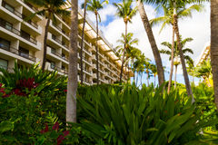 Luxury Hotel. On the beach in Hawaii royalty free stock photo
