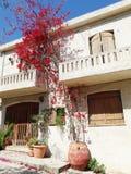 Luxury hotel building balcony and terrace santorini Greece Stock Image
