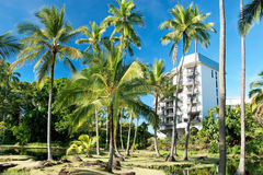 Luxury hotel on Hawaii with palms trees Royalty Free Stock Photo