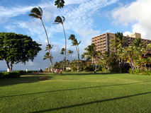 Luxury hotel in tropical setting. A luxury hotel in tropical setting, more precisely on Kaanapali beach in Maui Hawaii. Tropical garden with  green grass and Royalty Free Stock Photos