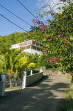 Luxury house on road with flowers bequia Stock Photos