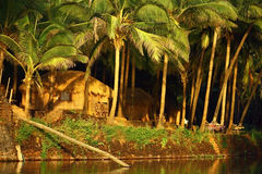 Luxury hut under palm tree