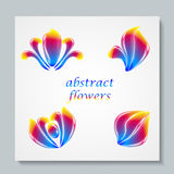 Luxury image logo Rainbow Abstract Flowers Set. Vector illusration Royalty Free Stock Photography
