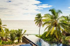 Luxury infinity swimming pool, surrounded by palm trees and fron Royalty Free Stock Photography