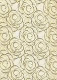 Luxury lace texture Royalty Free Stock Photography