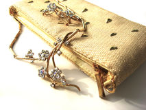 Luxury lady`s bag Stock Images