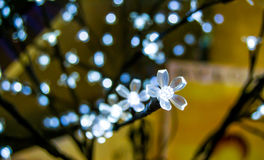 Luxury lighting with flower motive decorations Royalty Free Stock Images