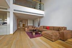 Luxury living room. Luxury open plan living room with atrium Stock Images