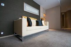 Luxury Living room. With sofa Stock Photos