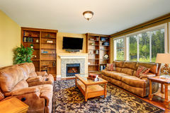 Luxury living room with book case and sofa set. Stock Images