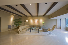 Luxury Living Room In House Stock Image