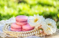 Luxury macaroons and flower. Pink almond macaroon cake. Elegant dessert for beautiful lady. royalty free stock image