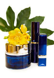 Luxury makeup and face cream. Natural face cream and make up in blue. Isolated over white Stock Photo