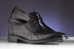Luxury man shoes 19 Stock Image