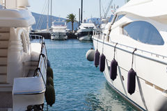Luxury marina Stock Image