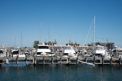 Luxury Marina in Fremantle. FREMANTLE,WA,AUSTRALIA-NOVEMBER 13,2016: Royal Perth Yacht Club and marina with luxury yachts, and sailboats under a clear blue sky stock photography