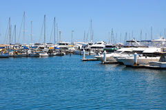 Luxury Marina royalty free stock image