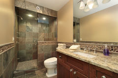 Luxury master bath. In new construction home Stock Images