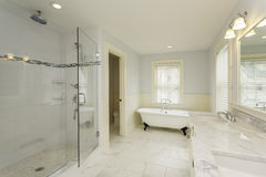 Luxury Master Bathroom with Enclosed Glass Shower Royalty Free Stock Image