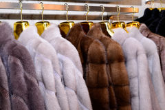 Luxury mink coats. Grey, brown, pearl color fur coats on showcase of market. Best gift for women is mink coat. Outerwear. Royalty Free Stock Images