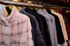 Luxury mink coats. Grey, brown, pearl color fur coats on showcase of market. Outerwear. Close up. Royalty Free Stock Images