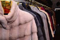 Luxury mink coats. Grey, brown, pearl, pink, black color fur coats on showcase of market. Best gift for women. Outerwear. Stock Images