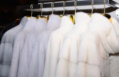 Luxury mink coats. White fur coats on showcase of market. Close up. Royalty Free Stock Photography