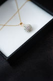 Luxury necklace Stock Photo