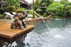 Luxury Outdoor Swimming Pool. And an Elephant Water Feature at a Thai Spa Resort Stock Photos