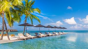 Amazing poolside and beach. Deck chairs and umbrellas and palm trees in tropical travel desitaniton Royalty Free Stock Photography