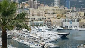 Luxury property in Monaco, many modern apartment buildings, yachts in harbor stock video footage