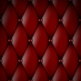 Luxury Red Leather Stock Images