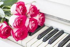 Luxury red roses on a piano. Bouquet of red roses and piano. Keys stock images