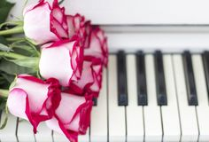 Luxury red roses on a piano. Bouquet of red roses and piano. Keys stock photography