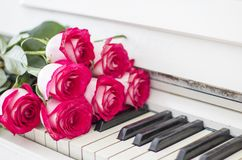 Luxury red roses on a piano. Bouquet of red roses and piano. Keys Royalty Free Stock Photography
